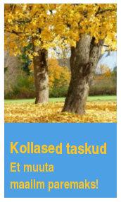 Kollased Taskud reklaam