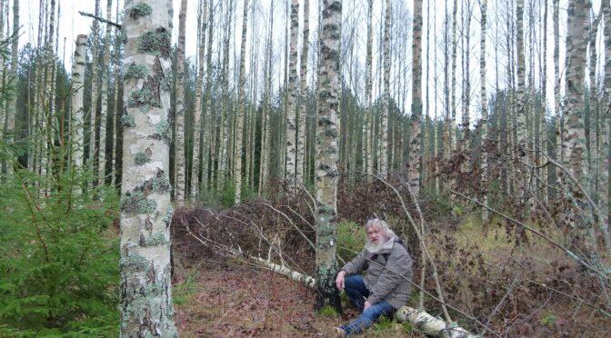 Metsataimelapsed ja inimtaimelapsed me ümber